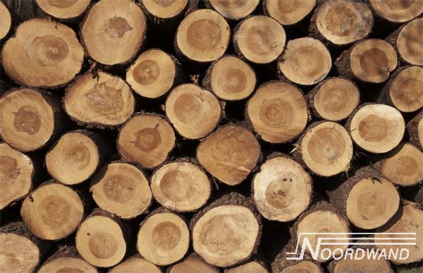 Foto behang Wood Logs Noordwand