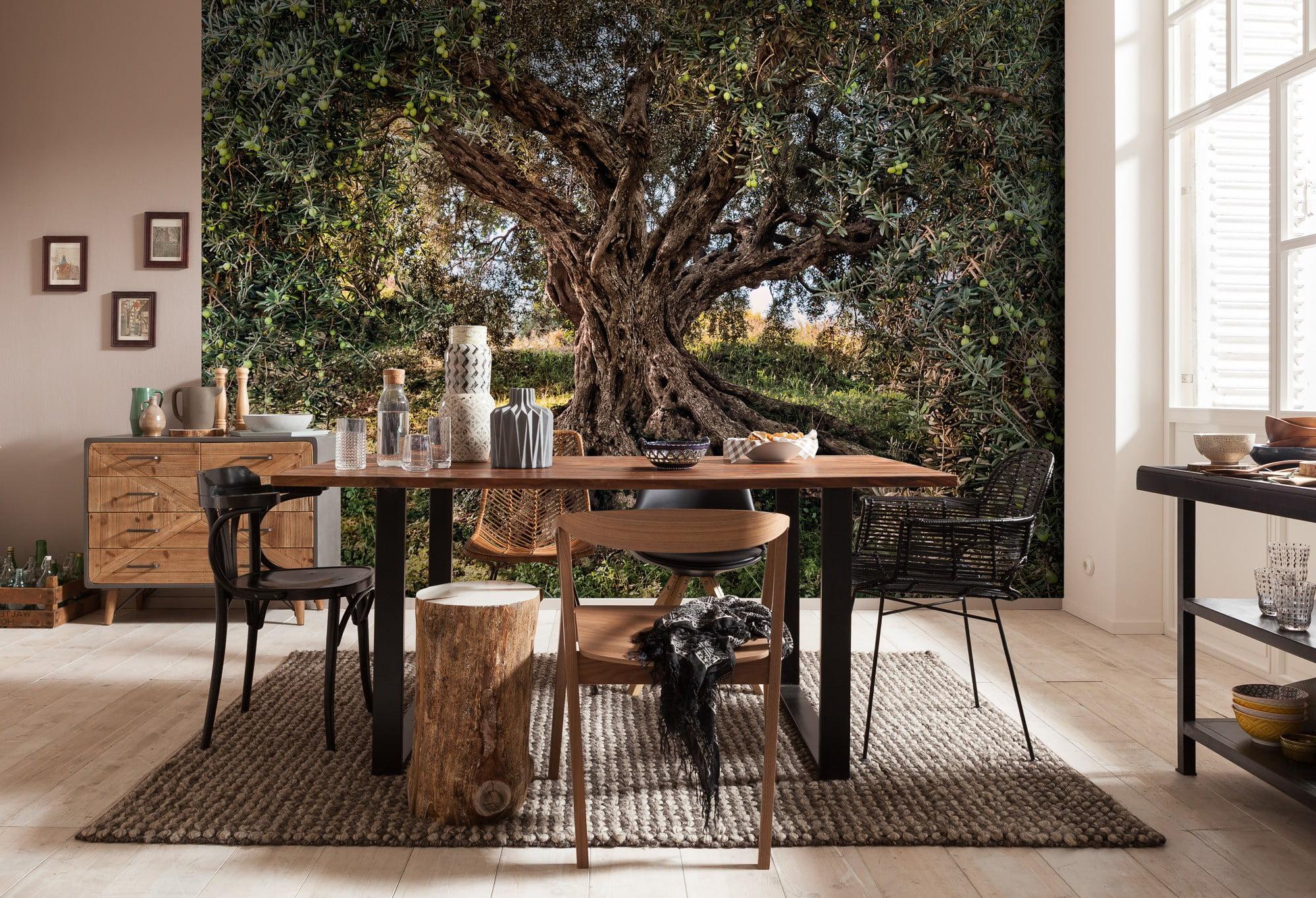 Komar Fotobehang Behang.Foto Behang Olive Tree 8 531