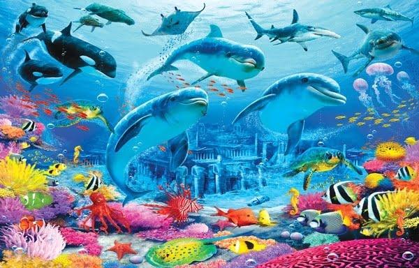 Foto behang Sea Adventure 43190