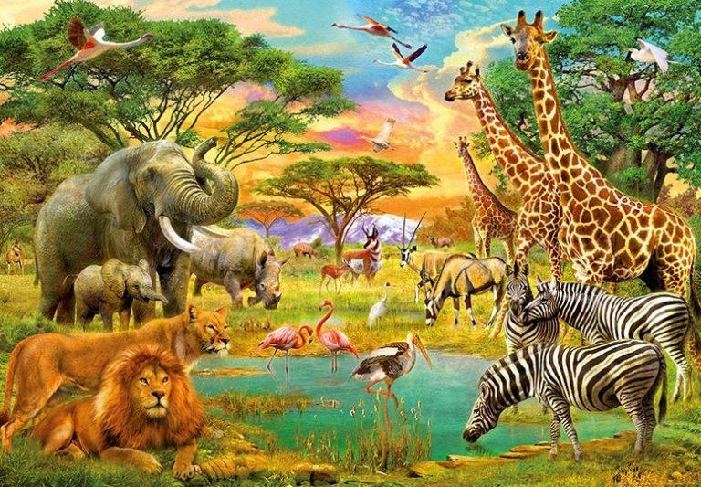 Foto behang African Animals 00154