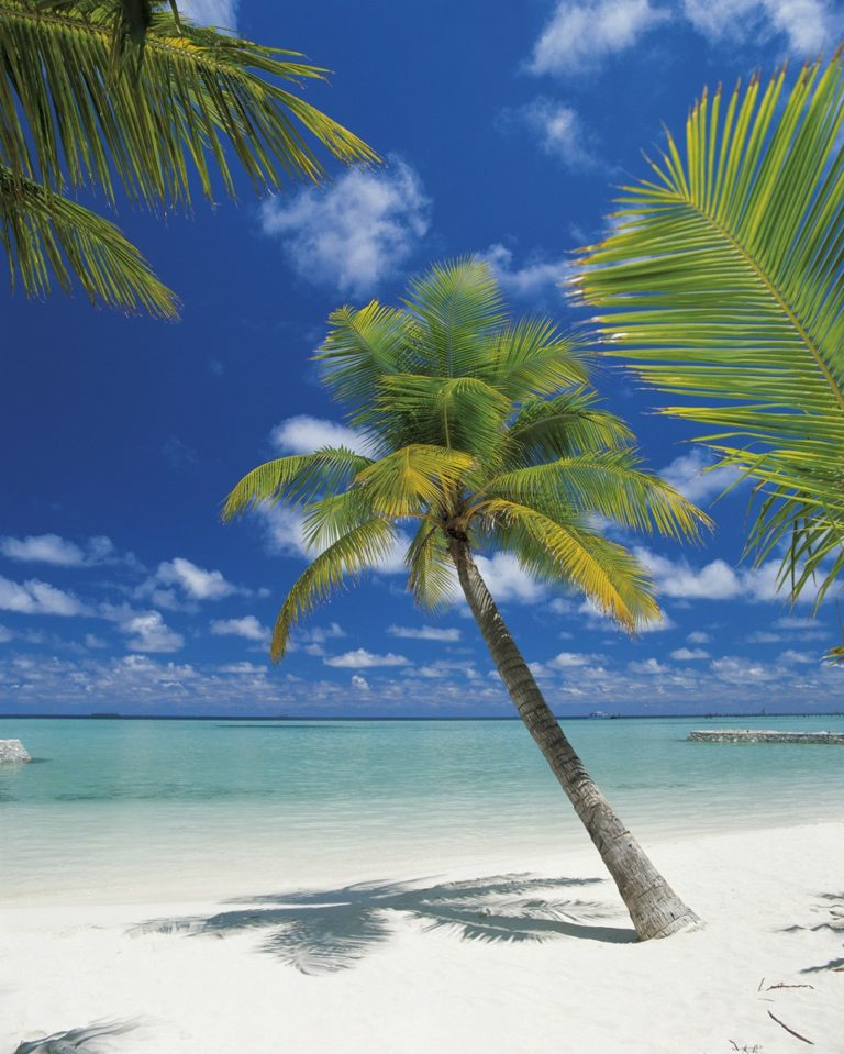 Foto behang Ari Atoll 4-883
