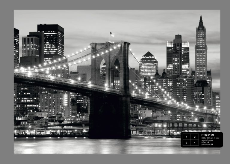 Foto behang Brooklyn Bridge FTS0199
