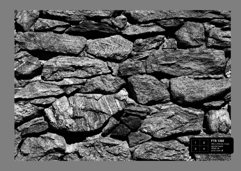 Foto behang Stenen zwart/wit FTS1302