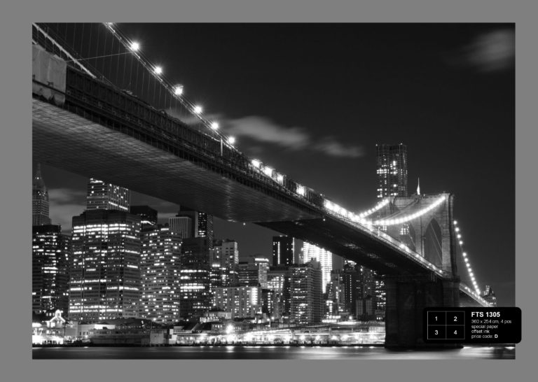 Foto behang Brooklyn Bridge FTS1305