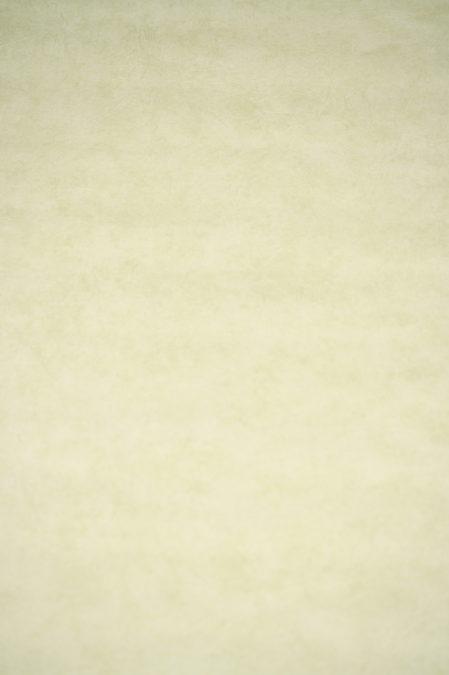 Vinyl op vlies behang 11130304 Lutece