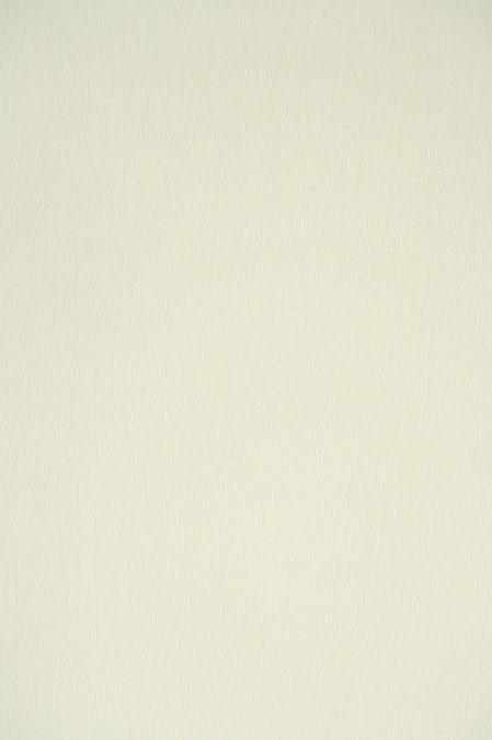 Vlies behang 54527 Marburg