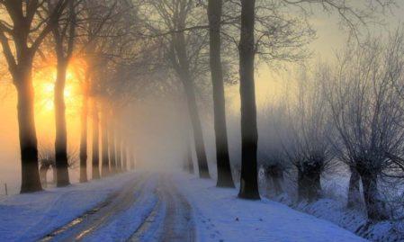 Foto behang winterochtend Holland 0007