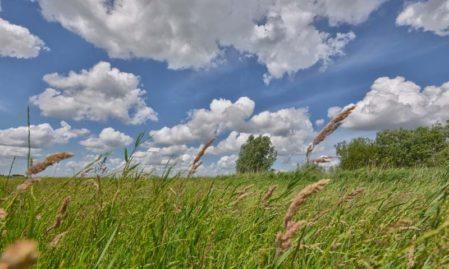 Foto behang Eemland grasland Holland 2166