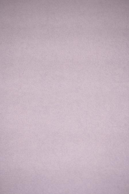 Vlies behang 6771-09 Erismann