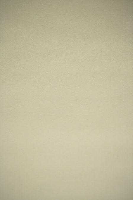 Vlies behang 6771-03 Erismann