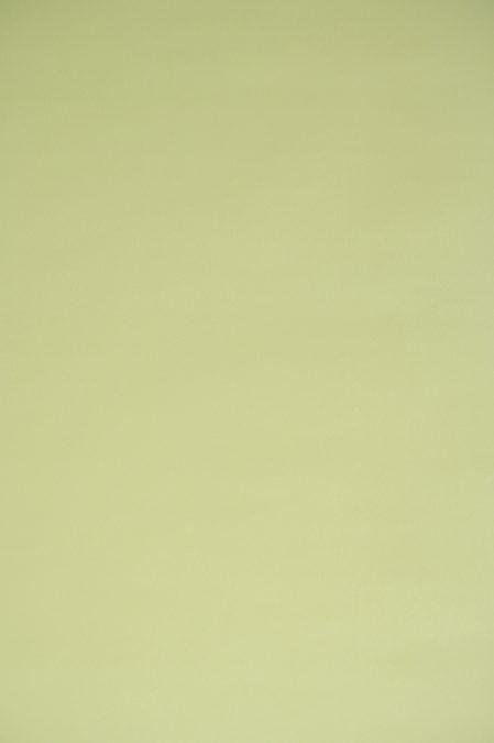 Papier behang 1195.3 Dutch Wallcoverings