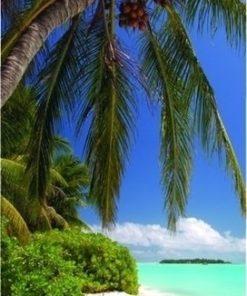 Foto behang Tropisch Strand 70029 Dutch Digiwall