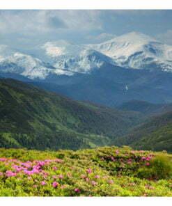 Fotobehang - Spring berglandschap-2