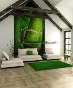 Fotobehang - bamboe - detail-1