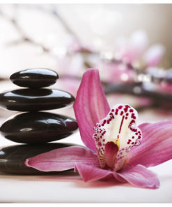 Fotobehang - Relaxation and Wellness-2