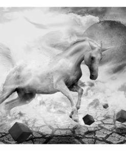 Fotobehang - Unicorn-2