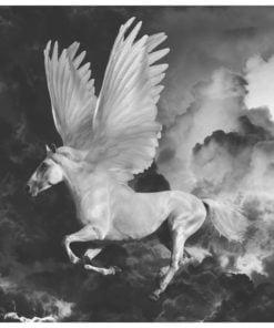 Fotobehang - Pegasus op de weg naar de berg Olympus-2