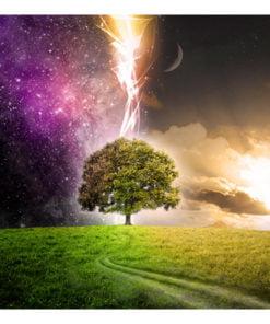 Fotobehang - Magic tree-2