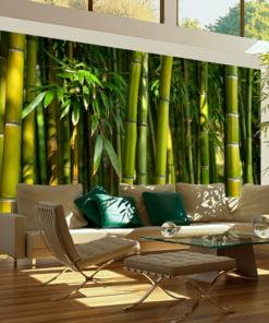 Fotobehang - Aziatische bamboebos-1