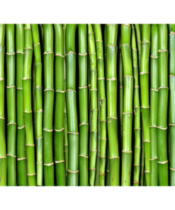 Fotobehang - Bamboe muur-2