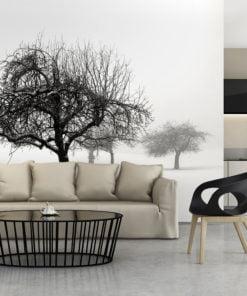Fotobehang - winter - trees-1