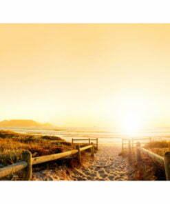 Fotobehang - In de richting van de zon ...-2