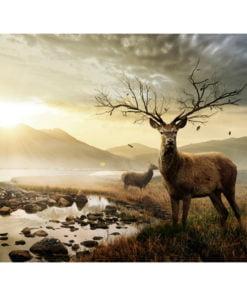 Fotobehang - Herten door bergbeek-2