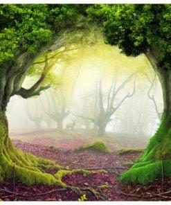 Fotobehang - Enchanted forest-2
