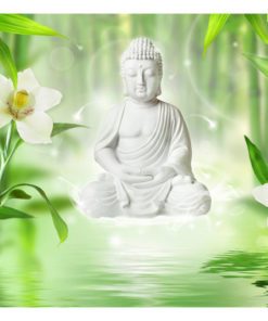 Fotobehang - Buddha and nature-2