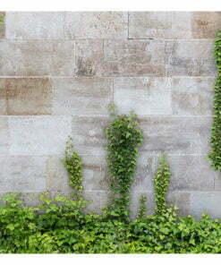 Fotobehang - The Forgotten Garden-2