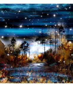Fotobehang - Magical forest-2