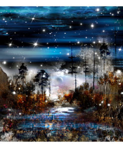 Fotobehang - Night in the forest-2
