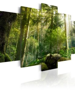 Schilderij - The Beauty of the Forest-1