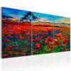 Schilderij - Valley of Poppies-1