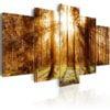 Schilderij - Forest Illumination-1