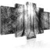 Schilderij - Forest of Memories-1