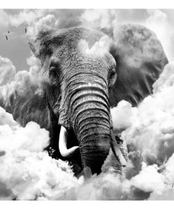 Fotobehang - Elephant in the Clouds (Black and White)-2