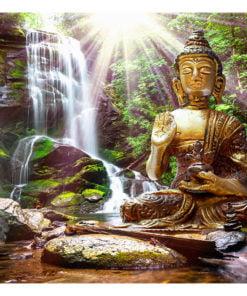 Fotobehang - Forest Prayer-2